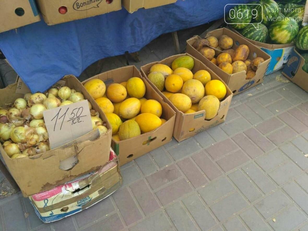Цены на арбузы и дыни в городе рекордно снизились, фото-1, Фото сайта 0619