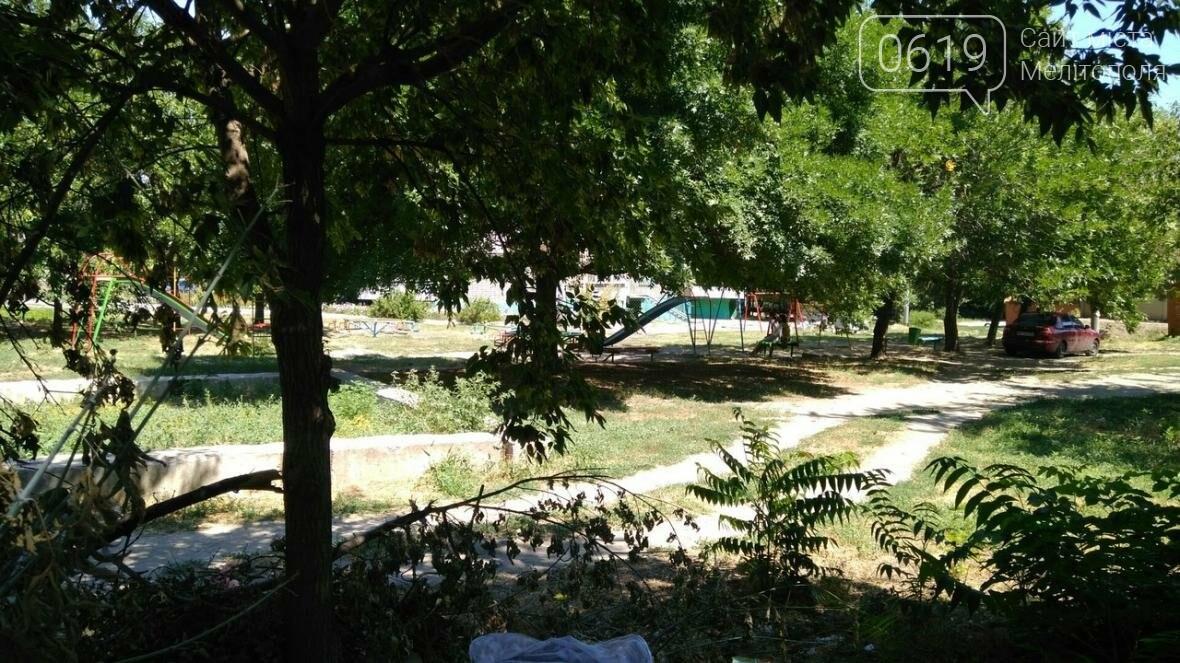 В центре города поселились бомжи, фото-3