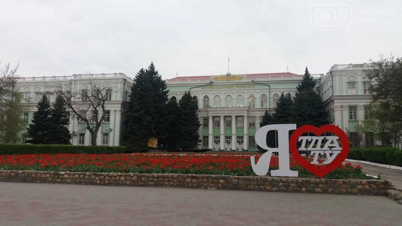 В центре Мелитополя появилась цветочная фотозона, фото-3