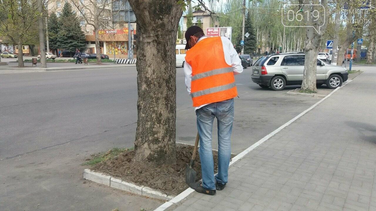 Улицы Мелитополя приводят в прядок, фото-1