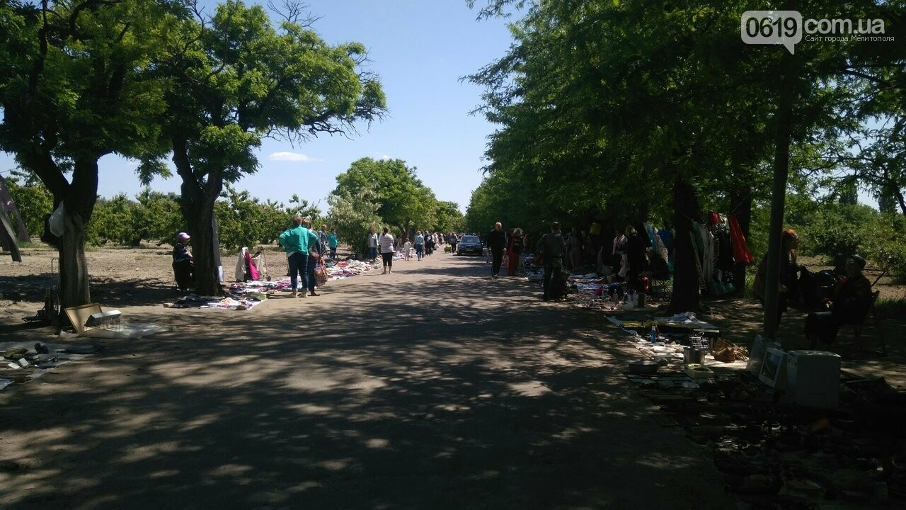 Мелитопольские торговцы устроили рынок в садах Филибера , фото-3, Фото сайта 0619