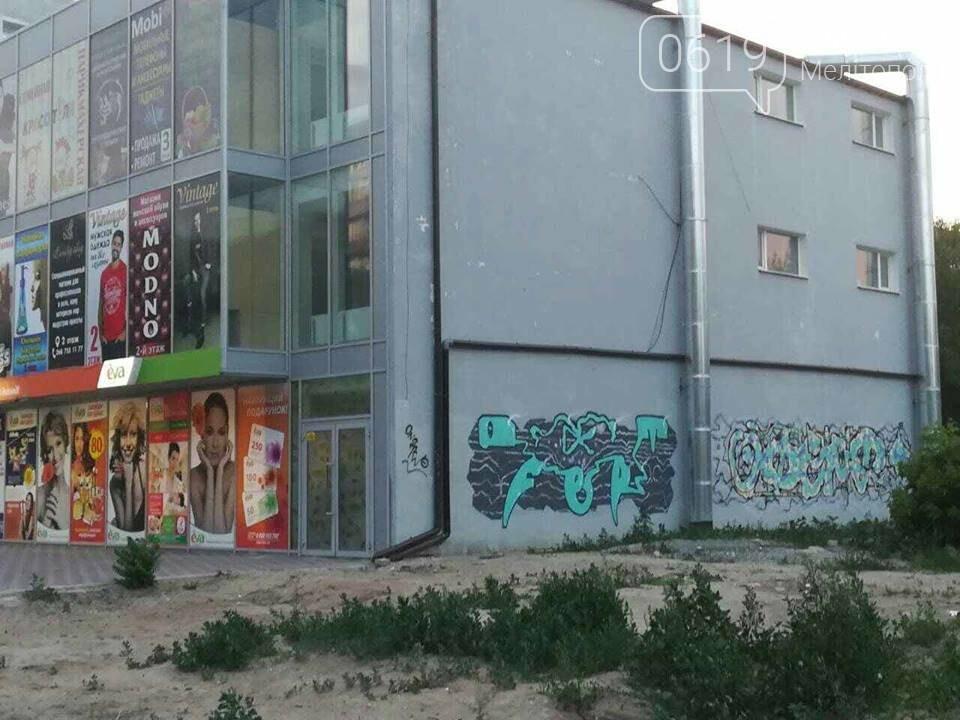 Новый торговый центр в Мелитополе разрисовали вандалы, фото-3