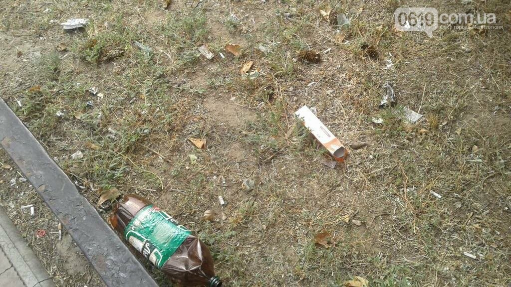 Зеленую зону в Мелитополе превратили в свалку, фото-4