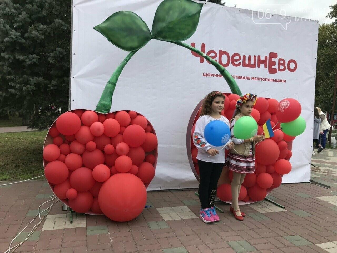 Вкусные блюда, яркие костюмы, выставки-ярмарки: в Мелитополе проходит фестиваль национальных культур, фото-7