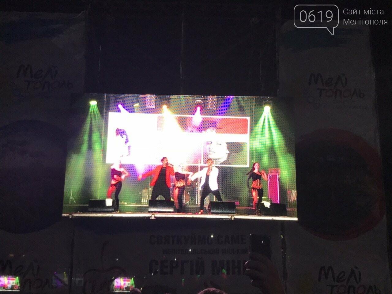В Мелитополе День города отметили концертом и ярким фейерверком, фото-6