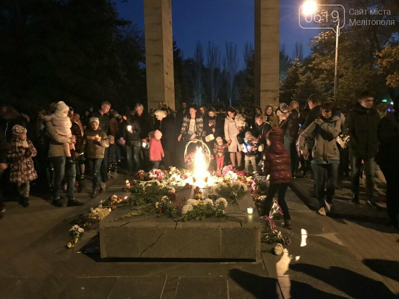 В Мелитополе День освобождения завершили традиционным факельным шествием, фото-1