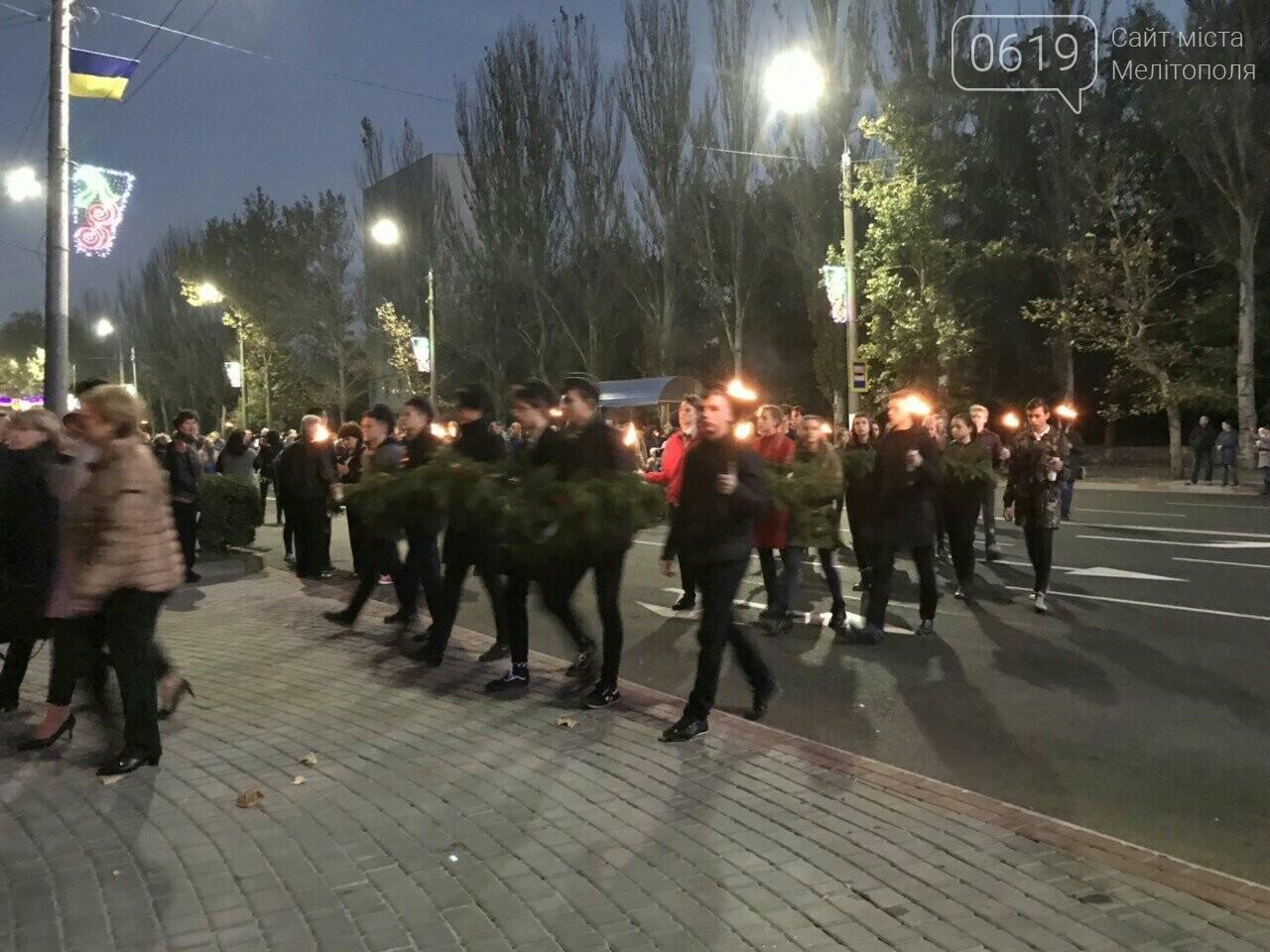 В Мелитополе День освобождения завершили традиционным факельным шествием, фото-3