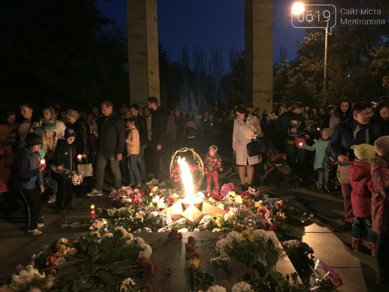 В Мелитополе День освобождения завершили традиционным факельным шествием, фото-6