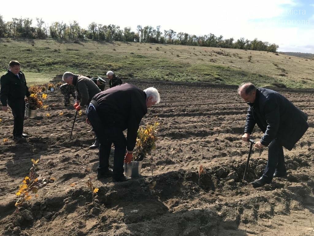 В Мелитопольском районе высадили 5 гектаров леса, фото-10