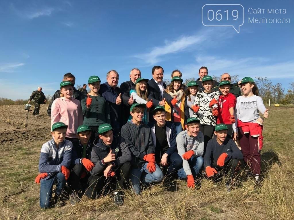 В Мелитопольском районе высадили 5 гектаров леса, фото-11