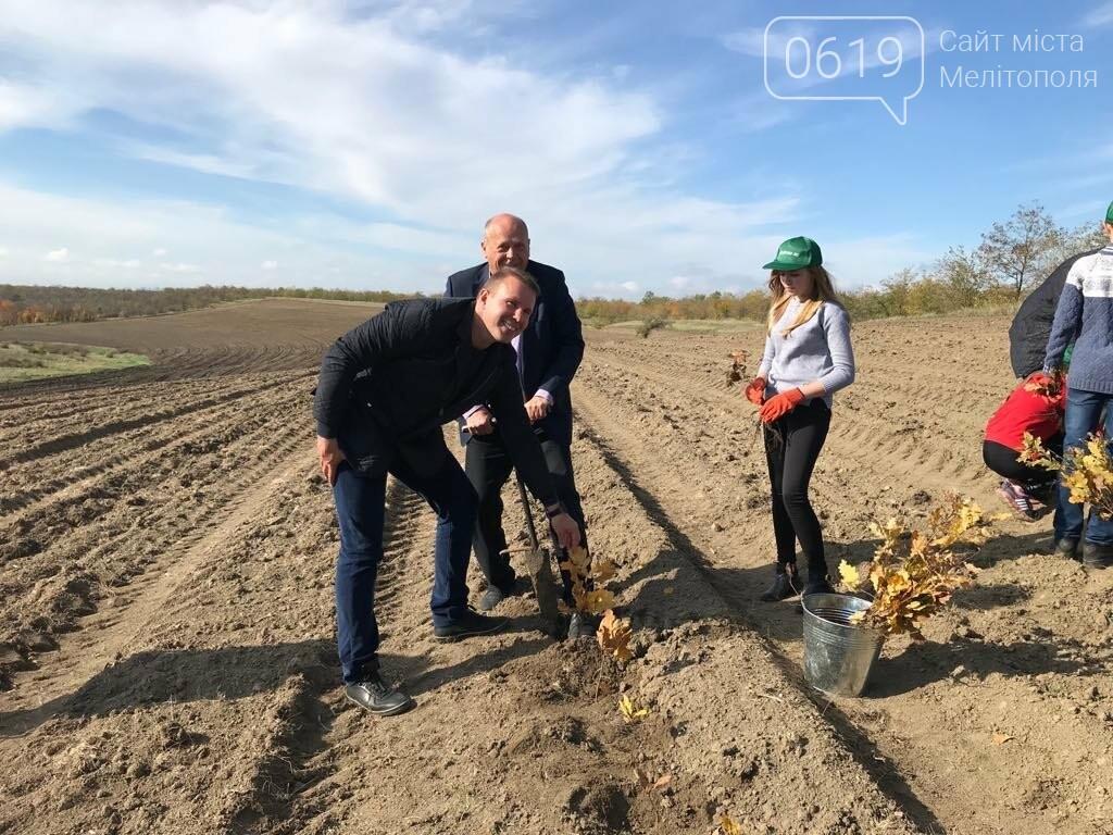 В Мелитопольском районе высадили 5 гектаров леса, фото-17