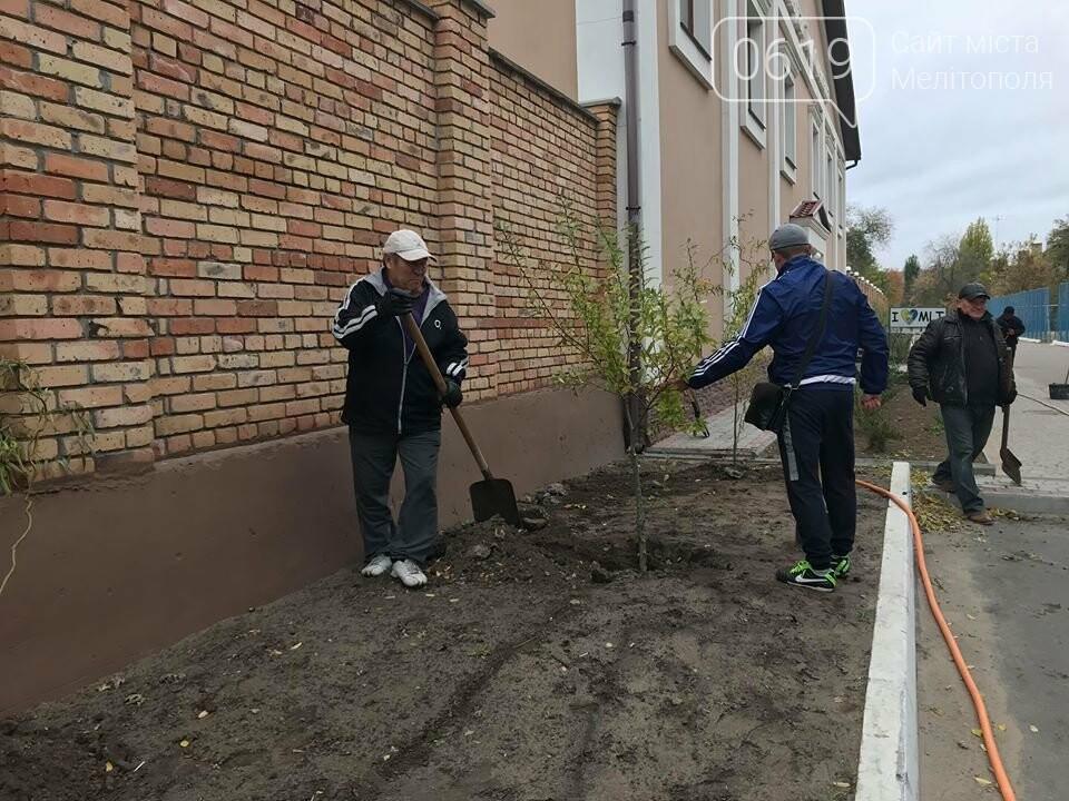 Вокруг мелитопольского стадиона высадили более сотни деревьев, фото-2
