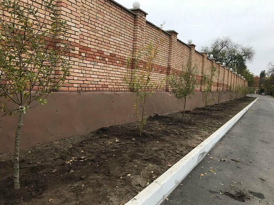 Вокруг мелитопольского стадиона высадили более сотни деревьев, фото-3