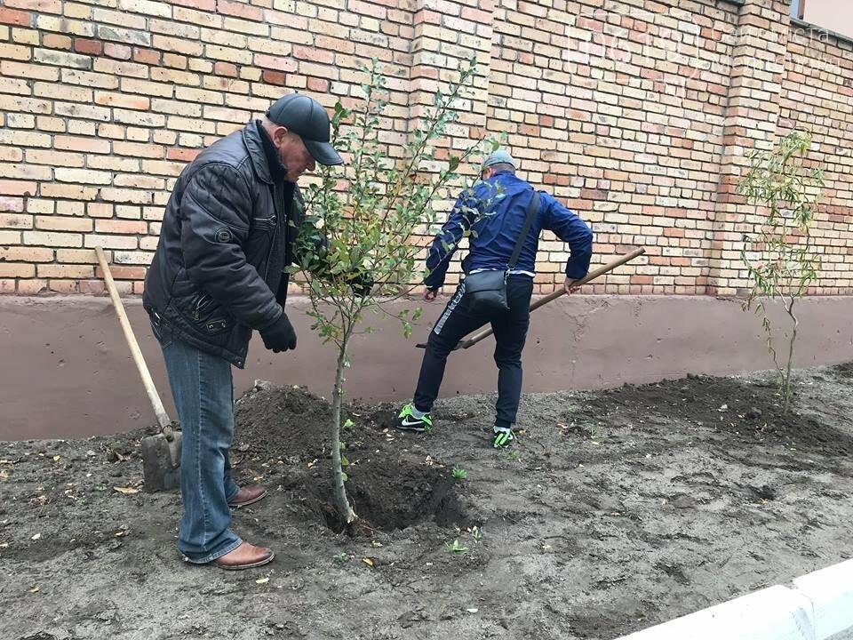 Вокруг мелитопольского стадиона высадили более сотни деревьев, фото-5