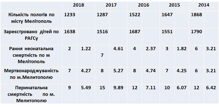 В Мелитополе подвели итоги работы роддома за 2018 год, фото-1