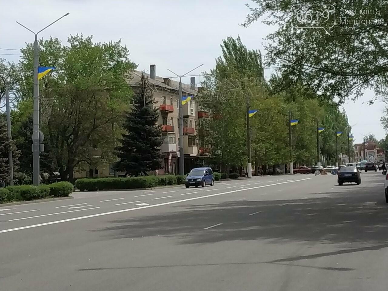 На улицу Героев Украины вернули государственные флаги, фото-1, Фото 0619