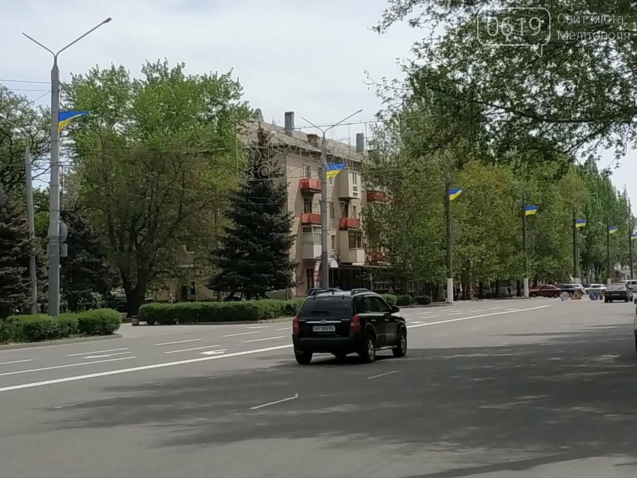На улицу Героев Украины вернули государственные флаги, фото-2, Фото 0619