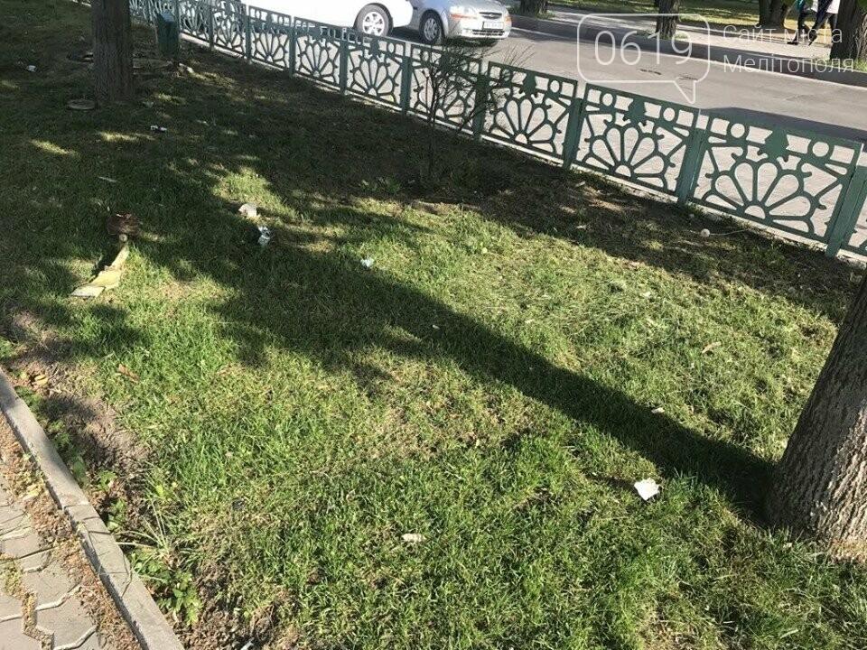 Зеленую зону в центре Мелитополя превратили в мусорку , фото-4