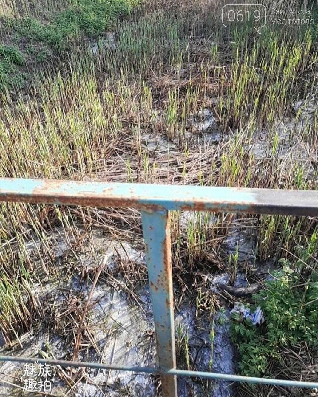 Мелитопольцы жалуются на зловонную реку , фото-1, Фото из соцсети