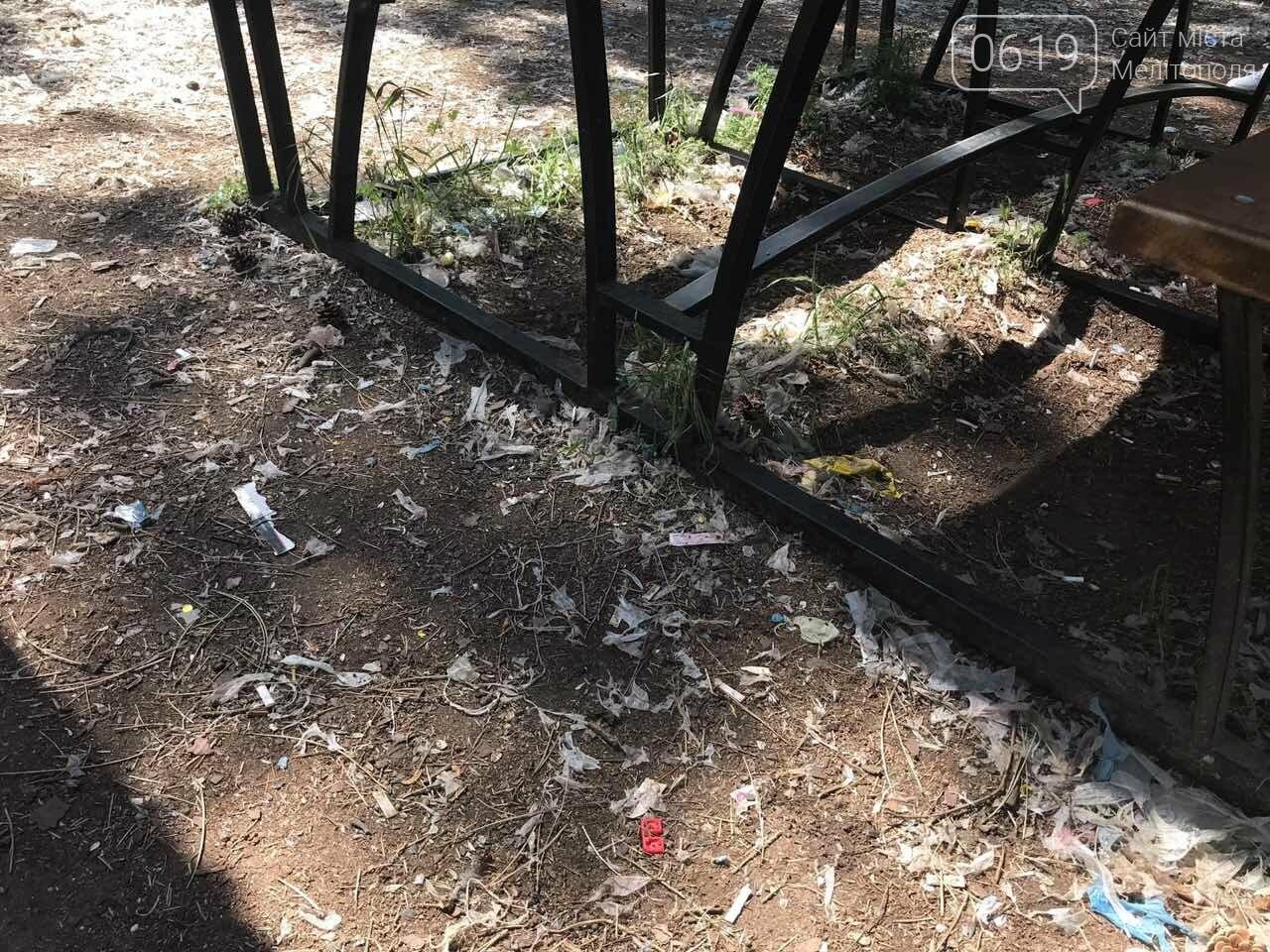 Мелитопольский лесопарк вновь превратили в свалку, фото-4, Фото сайта 0619