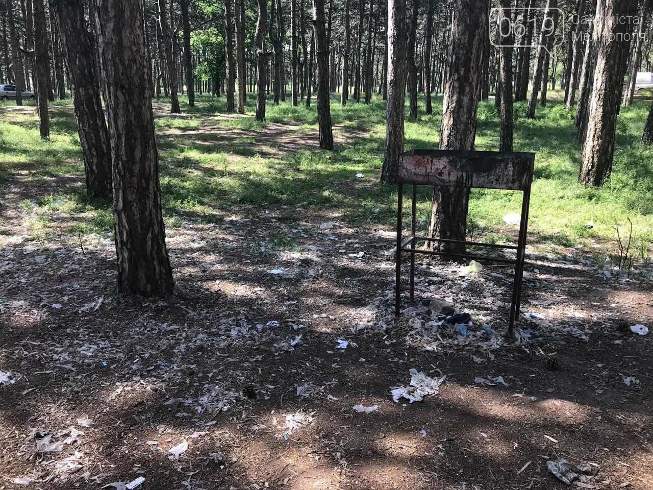 Мелитопольский лесопарк вновь превратили в свалку, фото-3, Фото сайта 0619
