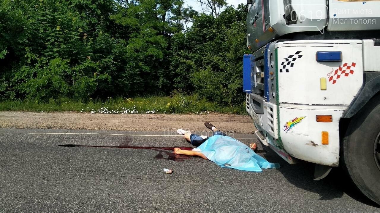 В полиции прокомментировали смертельное ДТП под Мелитополем , фото-2