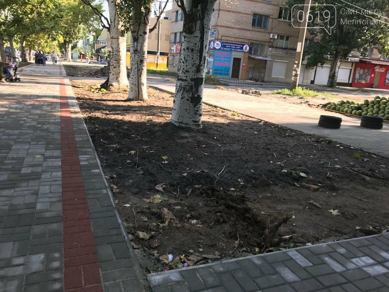 В Мелитополе на проспекте облагораживают газоны , фото-3