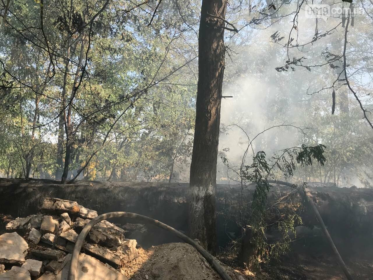 Микрорайон в дыму: в Мелитополе тушат масштабный пожар , фото-4