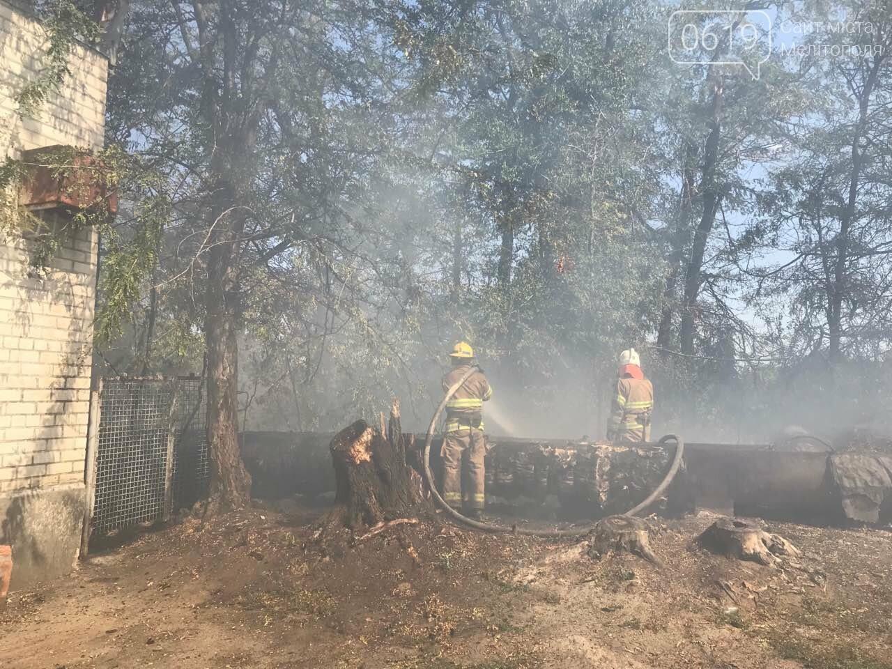 Микрорайон в дыму: в Мелитополе тушат масштабный пожар , фото-5