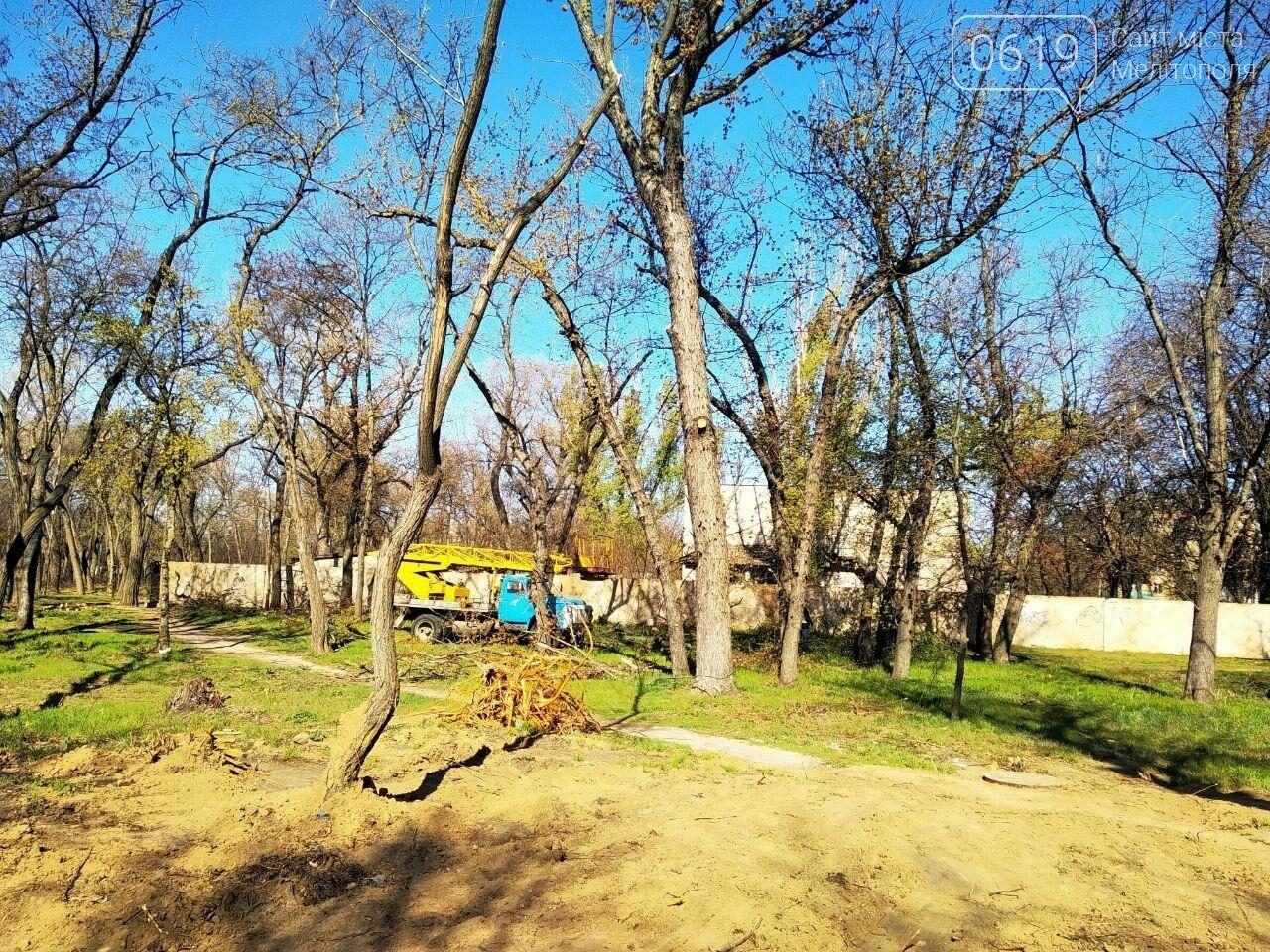 В мелітопольському парку садстанції проходить масштабна реконструкція, фото-3