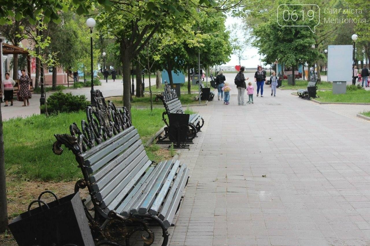 В Бердянске провели реставрацию скамей, фото-6