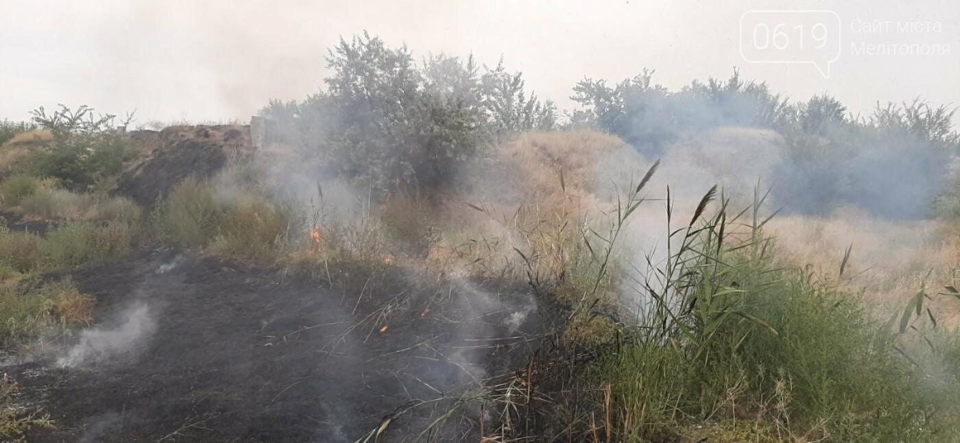 Спасатели в Мелитополе тушили пожар в экосистеме, фото-1