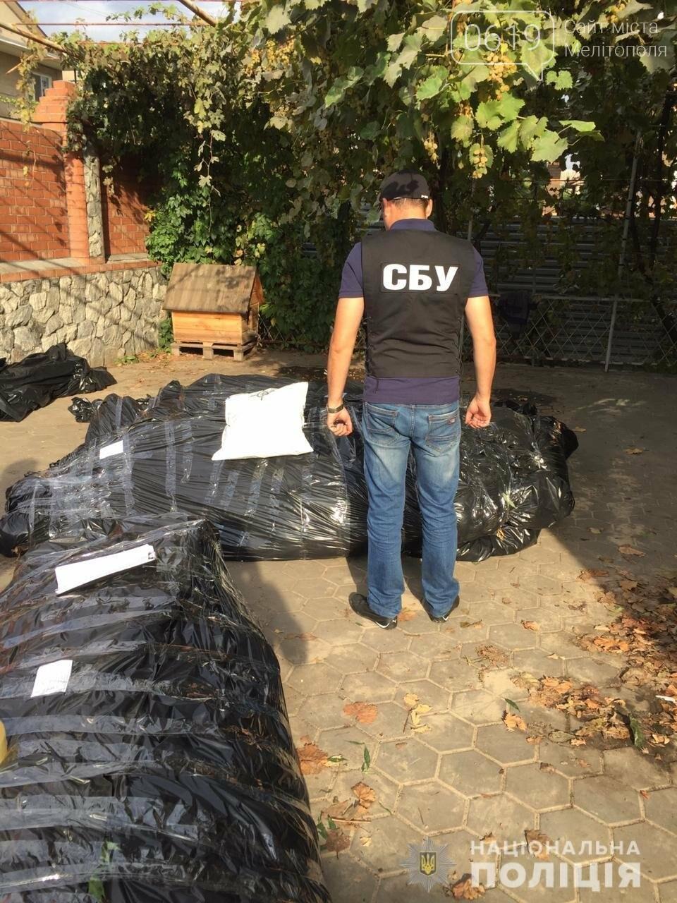 В Мелитополе правоохранители продолжают собирать урожай конопли на частных подворьях, фото-2