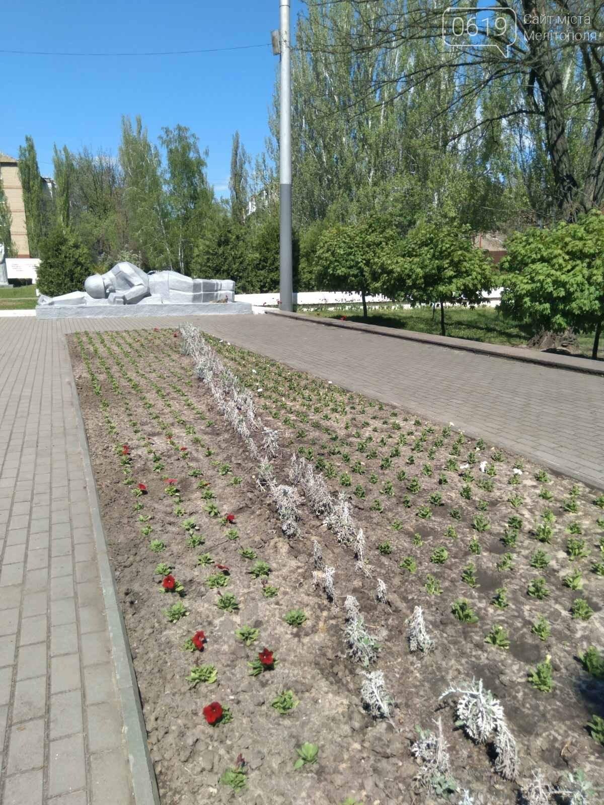 В память о героях: в Мелитополе ко Дню Победы высадят тысячи цветов, фото-5