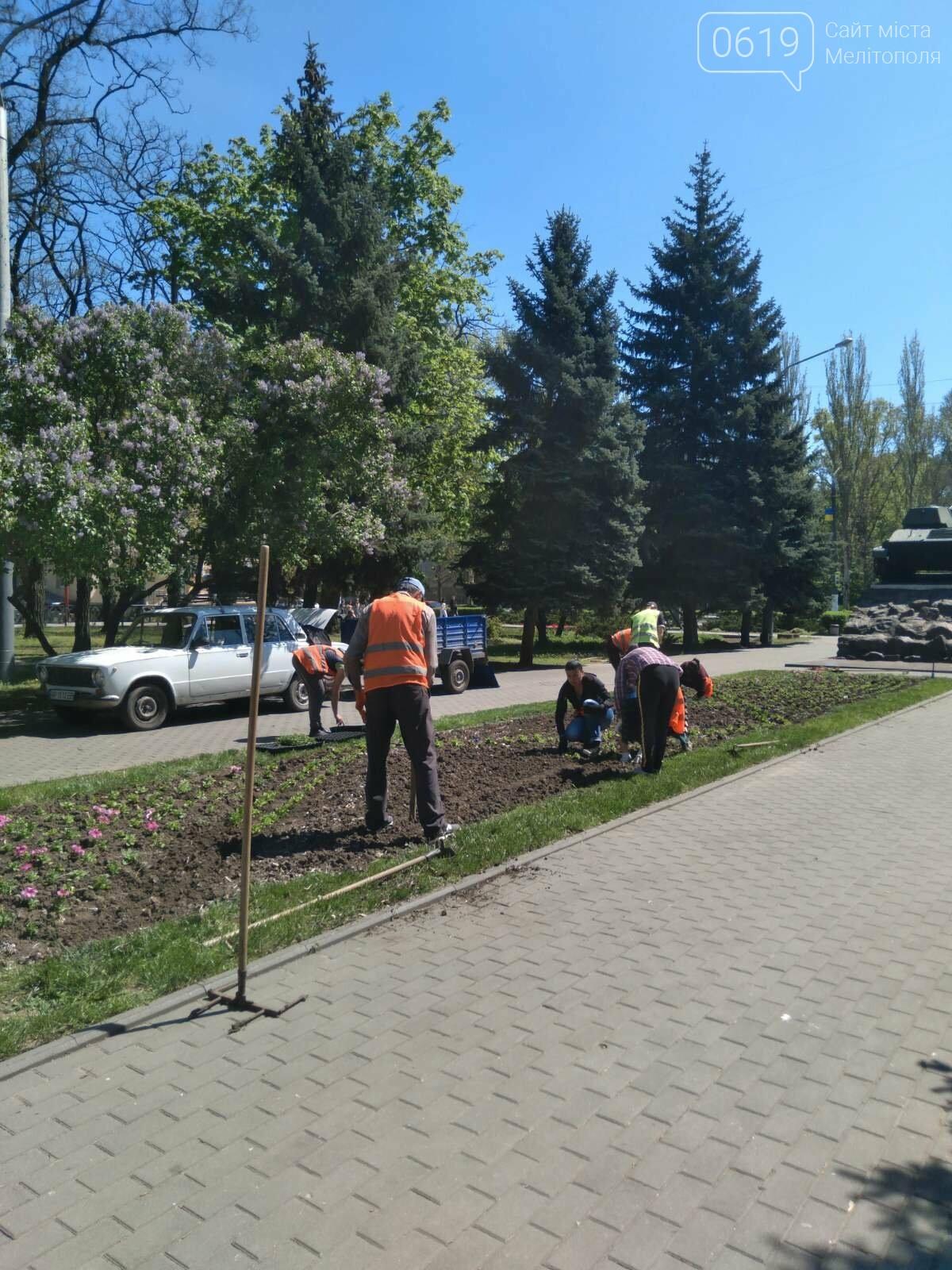 В память о героях: в Мелитополе ко Дню Победы высадят тысячи цветов, фото-6