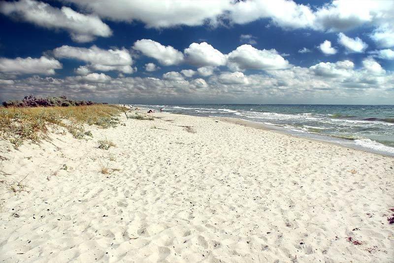 Лучшие курорты Азовского моря: остров Бирючий, фото-4