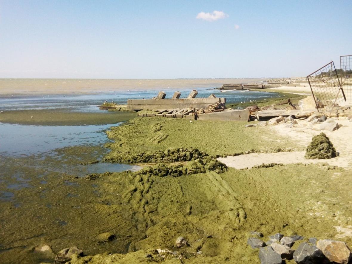 Состояние берега приводит отдыхающих в шок, фото-2, Фото из открытых источников