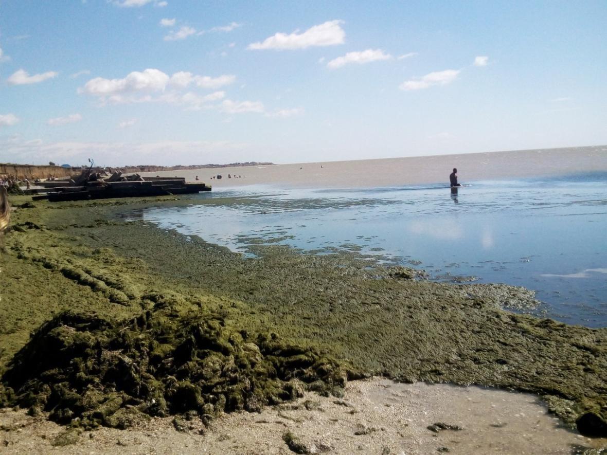 Состояние берега приводит отдыхающих в шок, фото-1, Фото из открытых источников