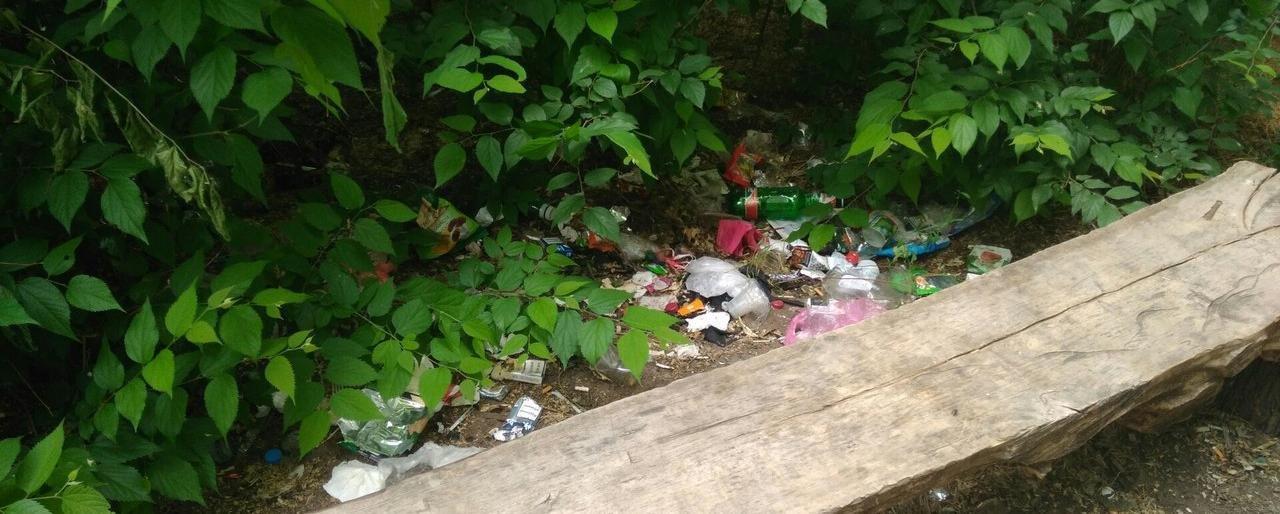 Парк продолжают заваливать мусором , фото-1