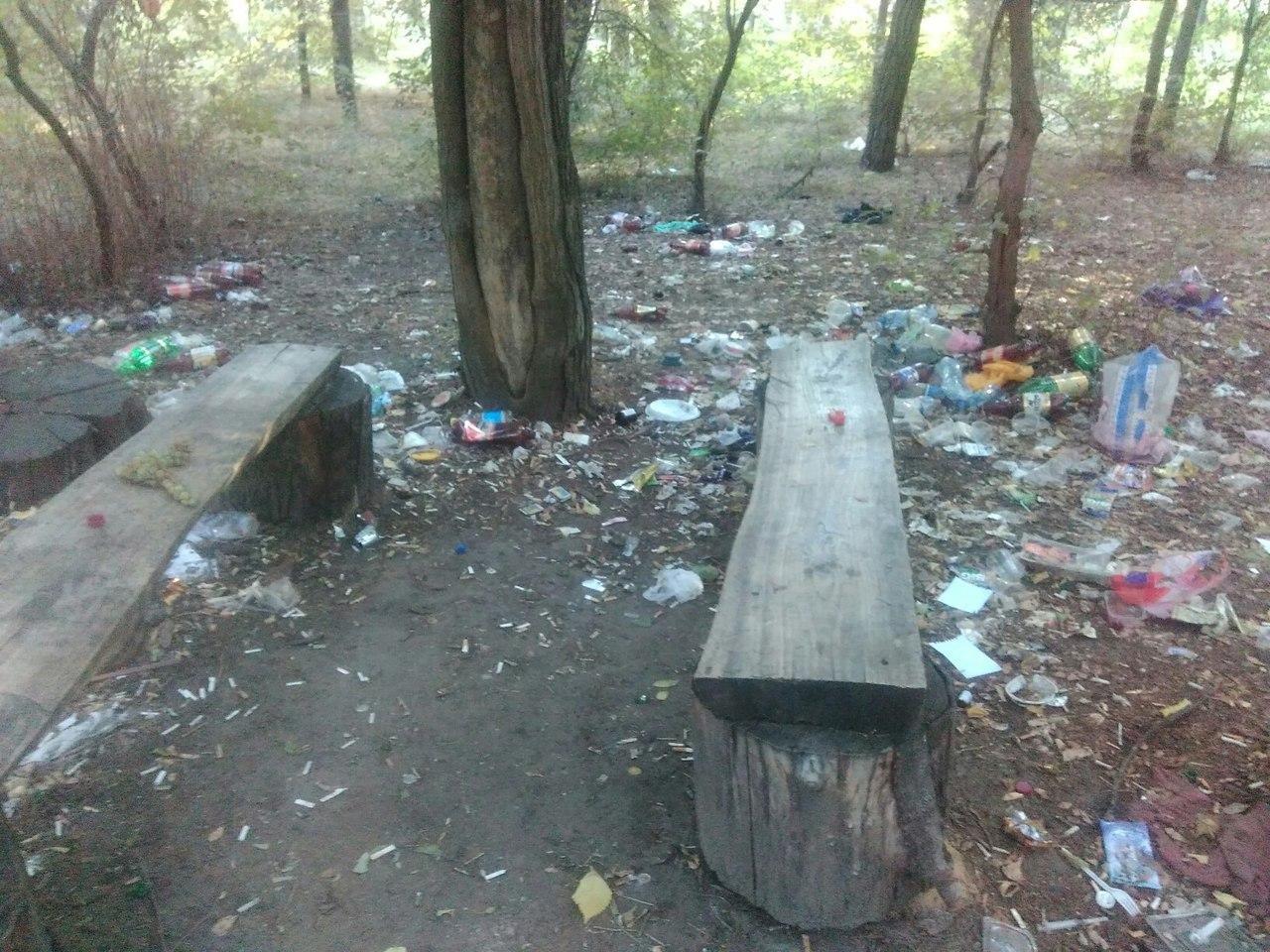Парк продолжают заваливать мусором , фото-3