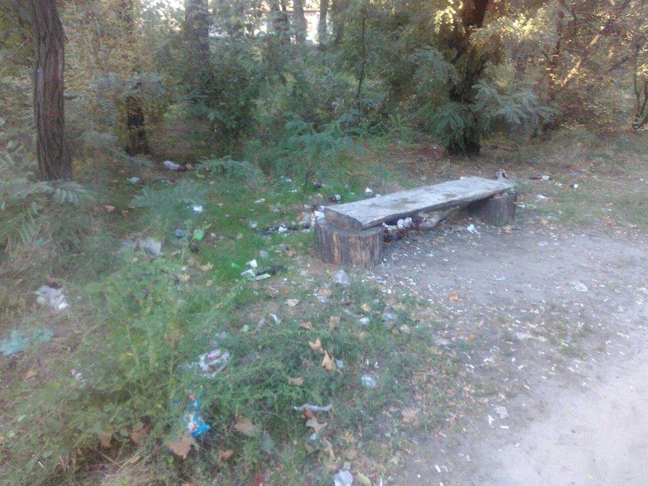 Парк продолжают заваливать мусором , фото-2