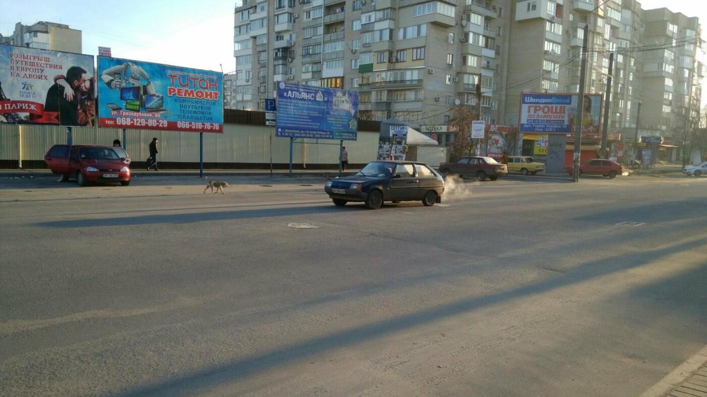 В Мелитополе в яму на проезжей части вставили ветки, фото-2, Фото сайта 0619