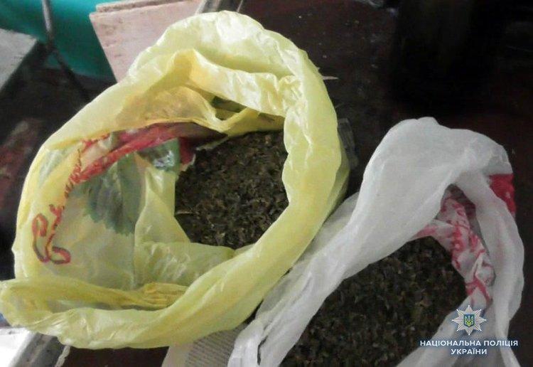 Кирилловские полицейские изъяли два пакета с каннабисом , фото-1