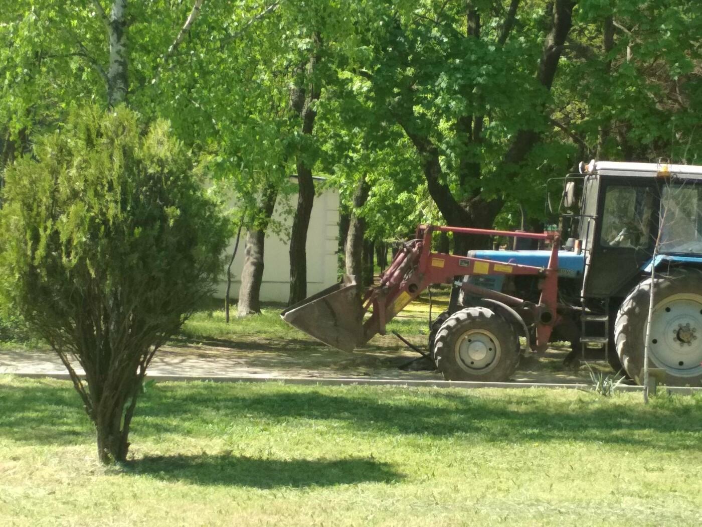 Из центра парка убирают земляную насыпь, фото-3