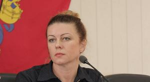 Декларация заместителя городского головы Светланы Бойко: отсутствие автомобилей и счетов в банках, фото-1