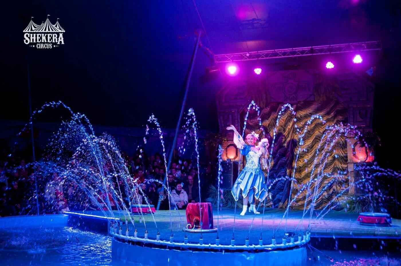 """Мелитополь посетил цирк """"Shekera"""" , фото-4"""
