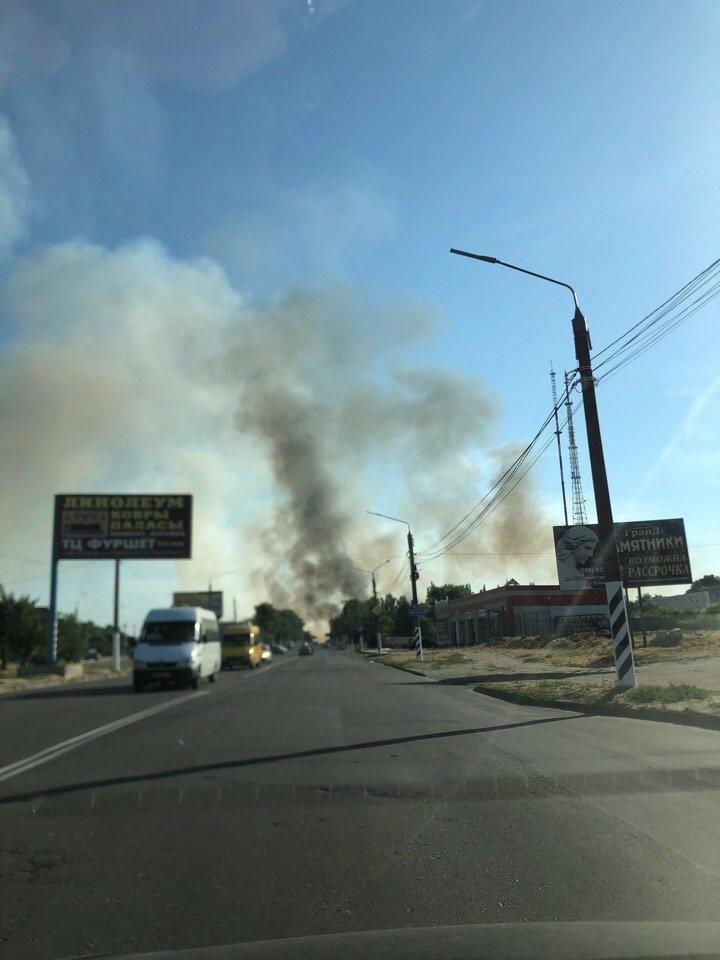 На южном выезде из Мелитополя масштабный пожар - горит поле и лесополоса, - ФОТО, ВИДЕО, фото-1, Фото сайта 0619