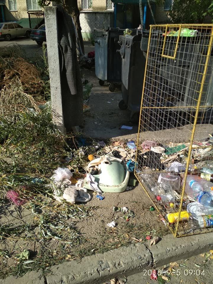 Виноваты сами: мелитопольцы устроили свалку во дворе многоэтажного дома , фото-2, Фото из соцсетей