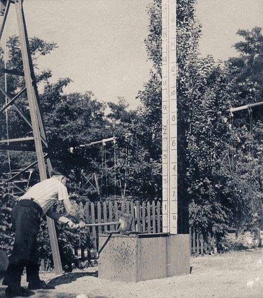Мелитопольский парк: от первого саженца до современного пруда, фото-10