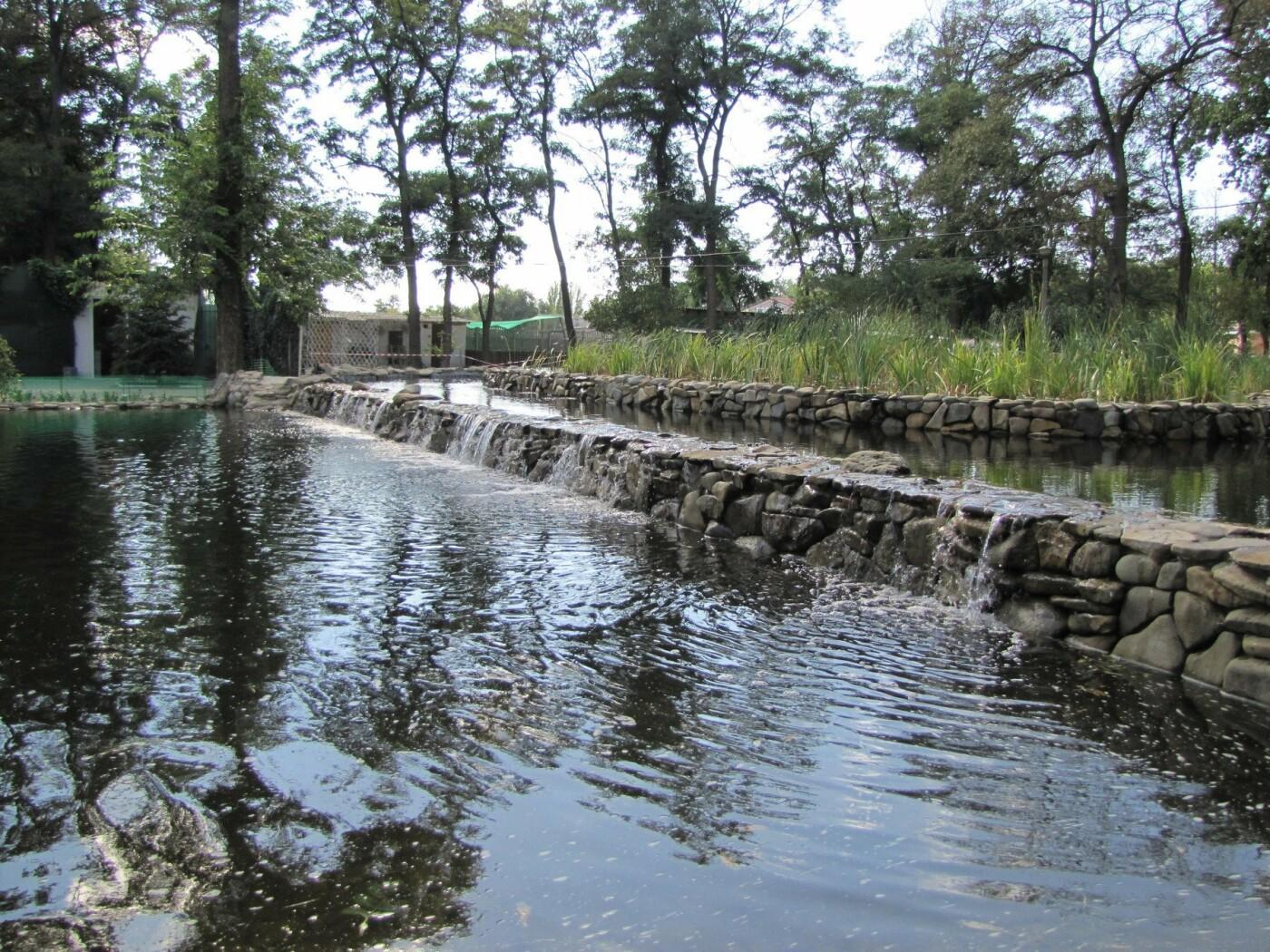 Мелитопольский парк: от первого саженца до современного пруда, фото-21